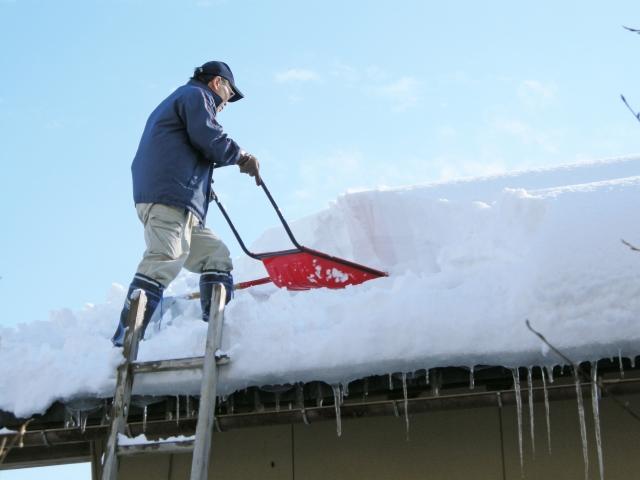 大雪による農業用ビニールハウスの倒壊被害状況及び除雪作業の注意点